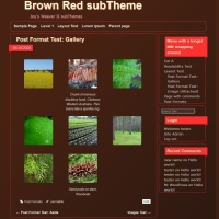 Brown Red subTheme-Gallery
