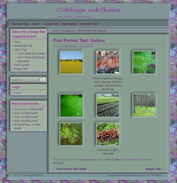 Cabbage subTheme-Gallery