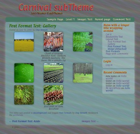 Carnival subTheme-Gallery-dimgray