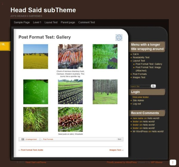 Head Said subTheme-Gallery
