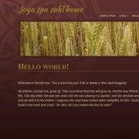 Joya spa subTheme-detail
